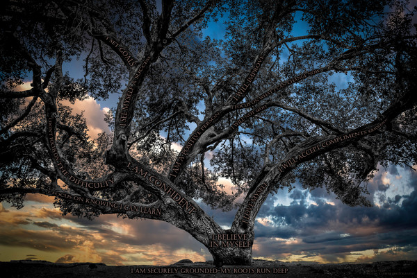 Believe Tree - Country Road Sunset Photograph For Sale as Fine Art