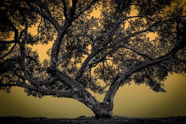Believe Tree - Yellow Photograph For Sale as Fine Art