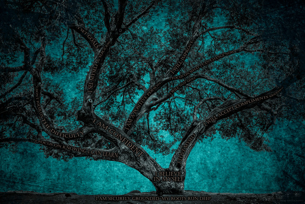 Believe Tree - Teal Paper Photograph For Sale as Fine Art