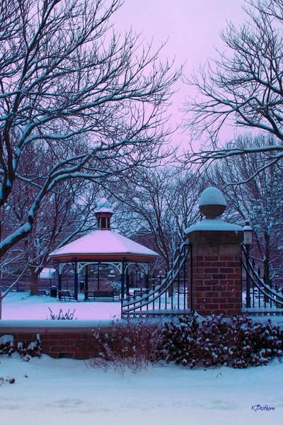 Snowy Naftger Park