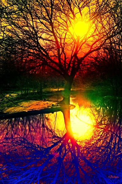 Serene Mirror
