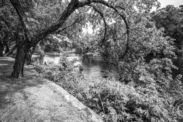 River's Edge Photograph For Sale as Fine Art