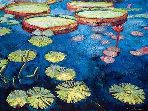 Longwood Waterlilies 12