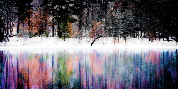 Winter Wonder Photograph For Sale as Fine Art