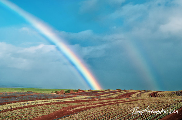 Fine Art Photography of Hawaiian Rainbows