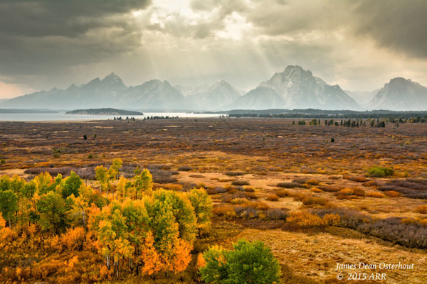 yellowstone national park, grand tetons,photography