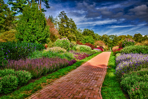 Yellow Brick Road Fine Art Photograph | JustBob Images
