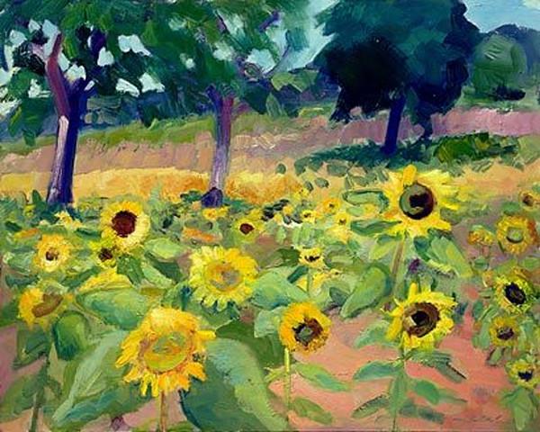 Where Your Glory Dwells 45 Sunflower Farm
