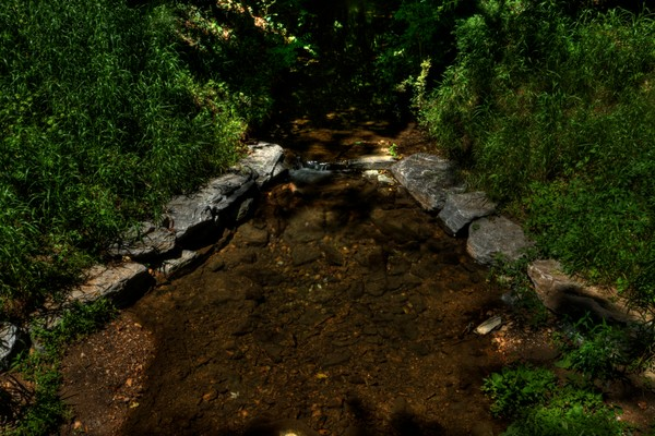 Fine Art Photographs of Sligo Creek by Michael Pucciarelli