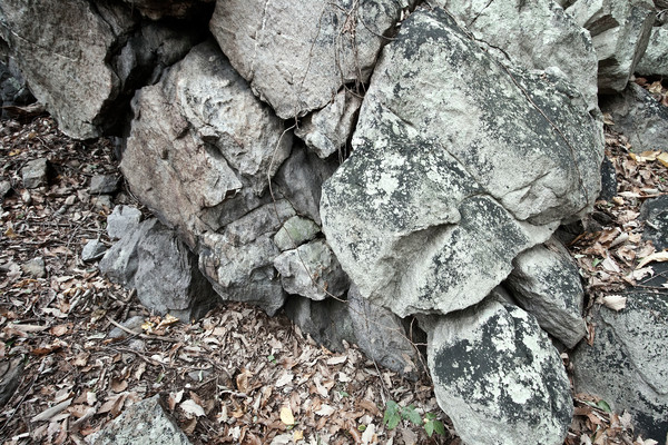 Rocks of Sugarloaf