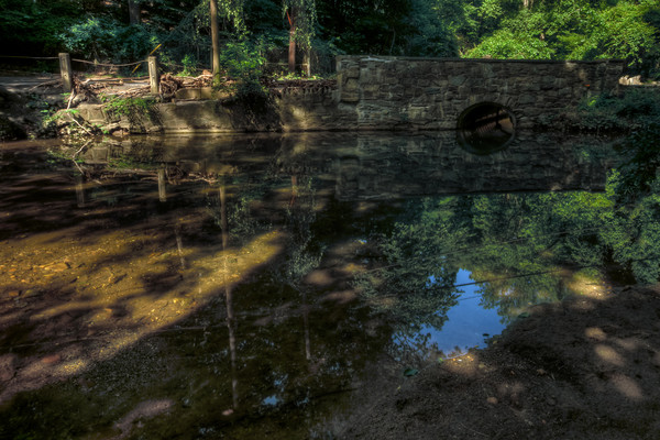 Rock Creek Reflections II