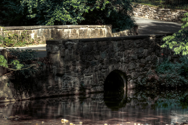 Fine Art Photograph of Rock Creek Park Reflections by Michael Pucciarelli