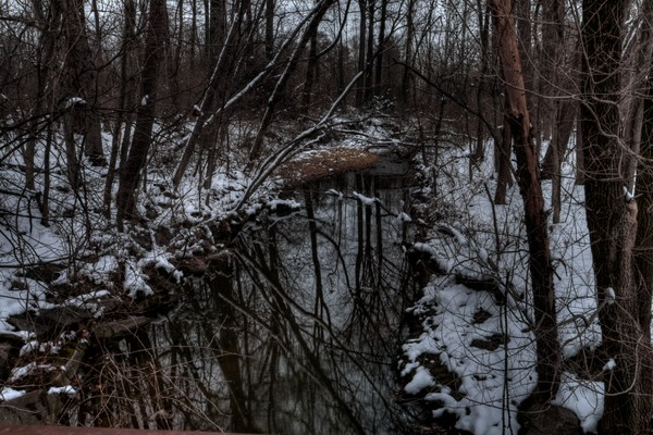 A Fine Art Photograph of Riverdale Winter by Michael Pucciarelli