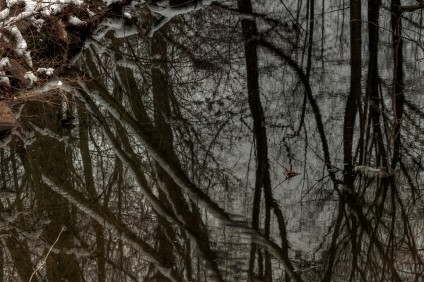 Riverdale Fine Art Photographs of Winter by Michael Pucciarelli