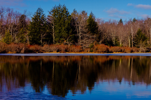 Ricketts Glen Reflection Fine Art Photograph by Michael Pucciarelli