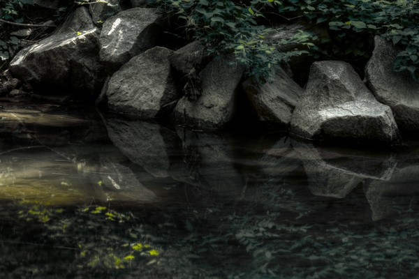 Fine Art Photographs of Rock Reflections in Rock Creek Park by Michael Pucciarelli