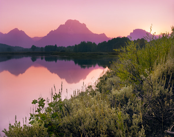 Purple Mountains Majesty, Grand Tetons NP