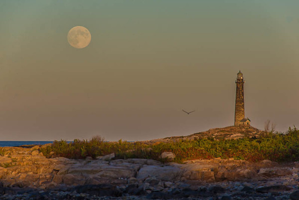 Harvest Moon over Thachers Island