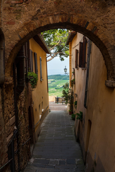 To the Fields - Montepulciano - Italy