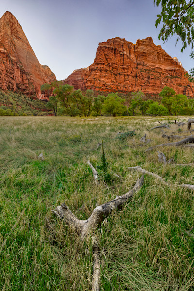 Deer Trap Mountain - Zion National Park - Utah