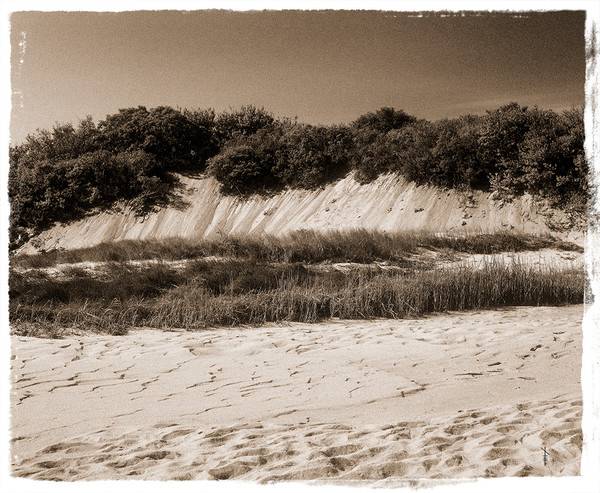 Cape Dunes #2 Mono