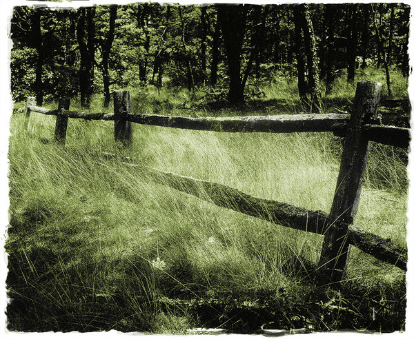 Old Fence Mono