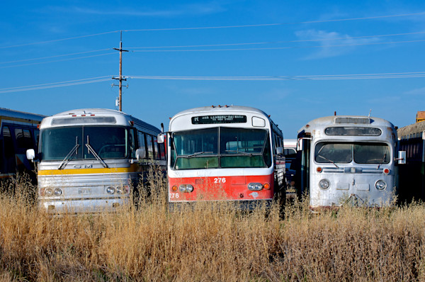 Old Bus Graveyard