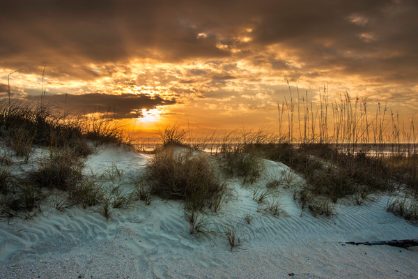 Beach Dunes Sunrise