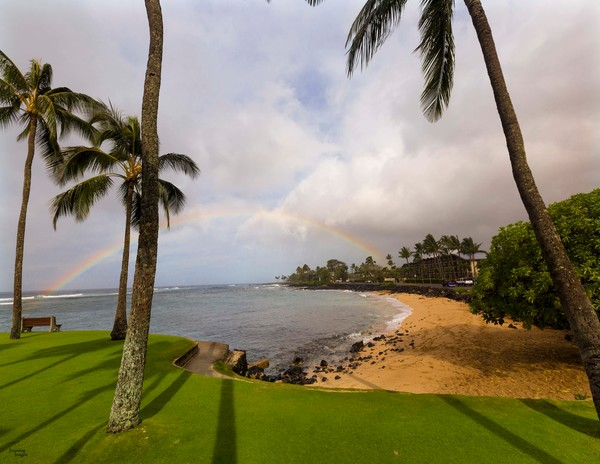 Rainbow and Palm Trees at Lawai Beach, Poipu | Kauai Fine Art Photography, Hawaii