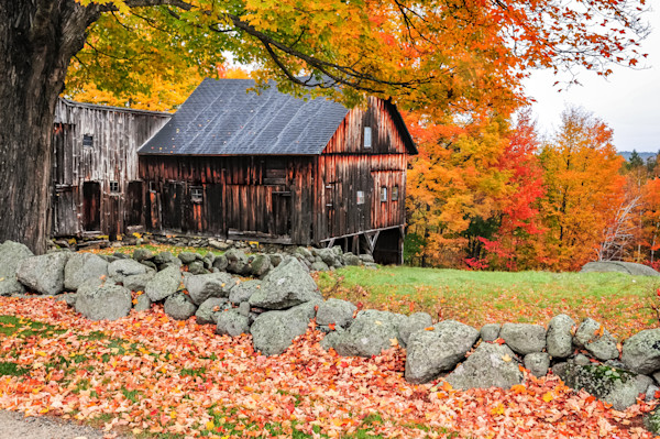 Lovely Dublin New Hampshire rural landscape during the peak fall foliage season. A quintessential New England countryside fine art print from the Monadnock region.