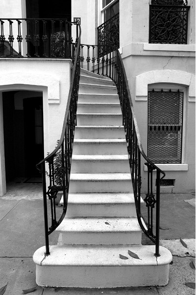Savannah Stairs No. II