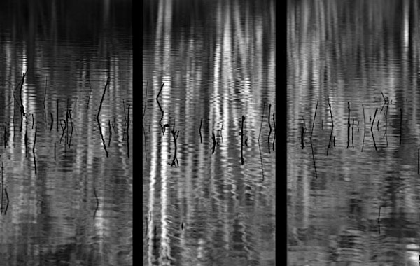 Reflections - Trip Tych