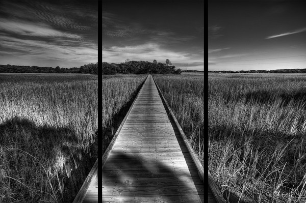 Edisto Boardwalk - Trip Tych