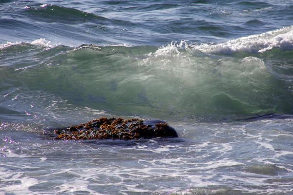 clear wave rock