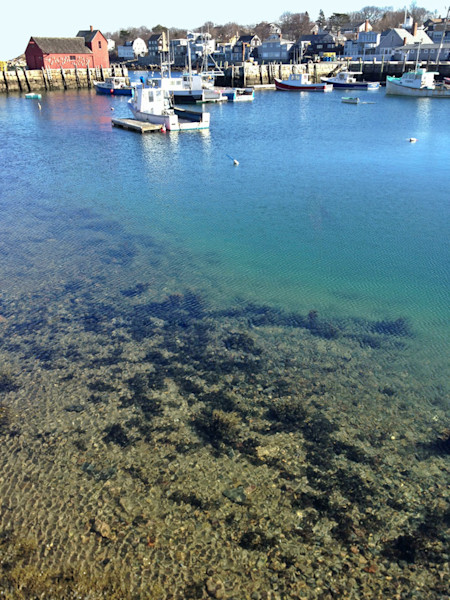 rockport harbor clear water motif #1
