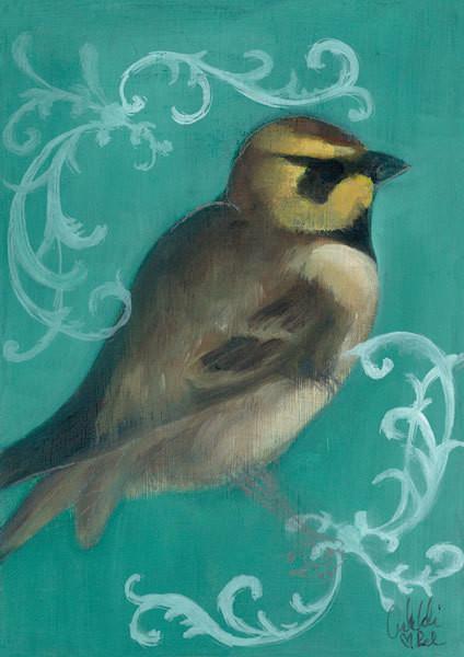 Bird Study V