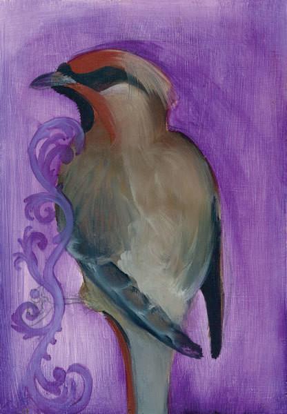 Bird Study X