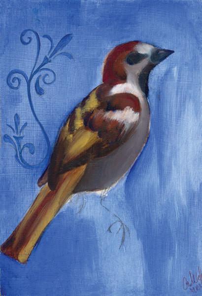 Bird Study XI