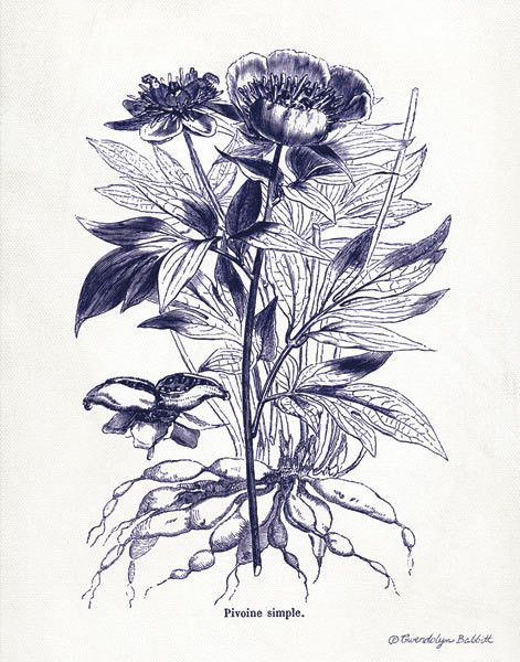 Indigo Botanical III