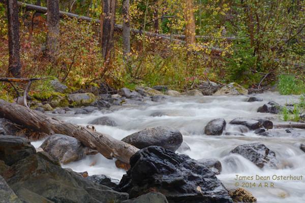Lake,creek,moose,Wilson,WYOMING
