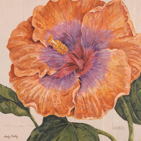 Island Hibiscus II