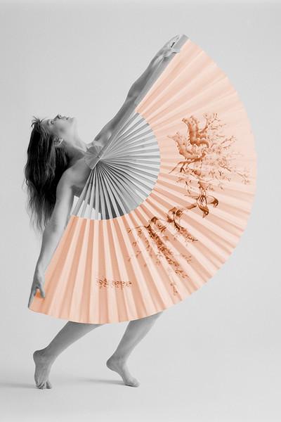 Fan Girl 2