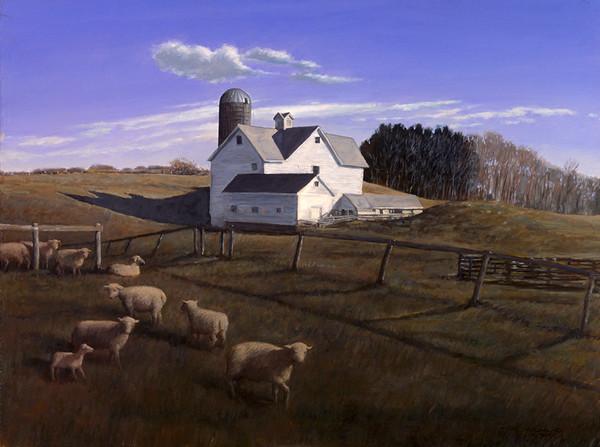 Patterson Sheep Farm