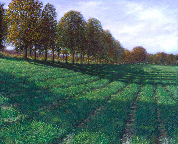 Hawthorne Field