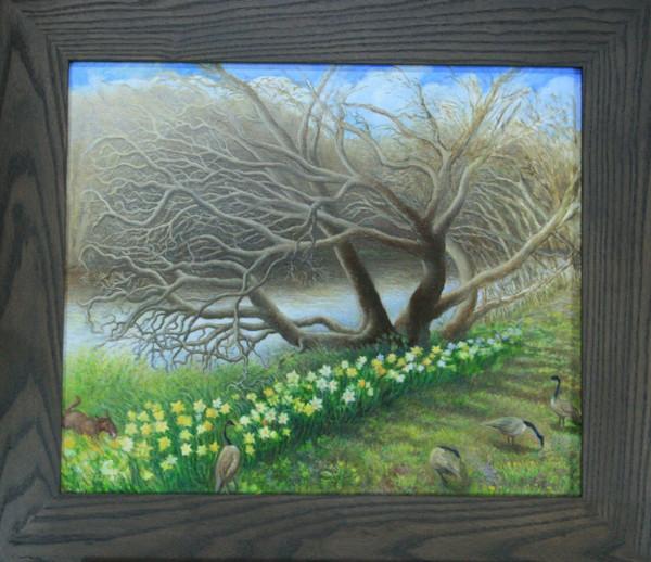 Catawba Tree with Daffodils