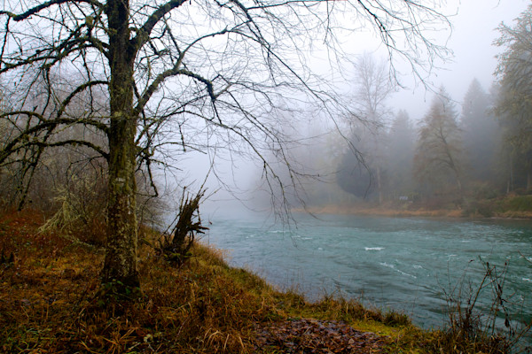 Beautiful Misty Day on the Willamette River, Prints