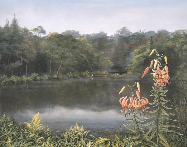 Hiro's Pond