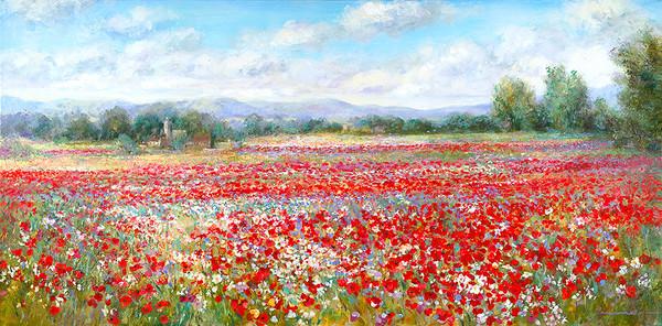 Poppy Fields, Normandy