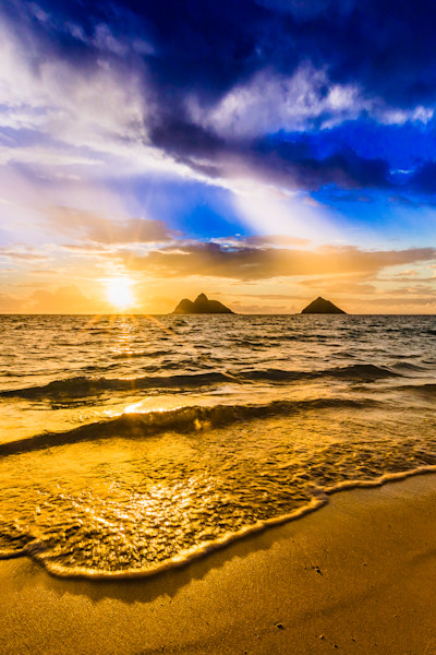 Beach Photography  |  Mokes by Shane Myers