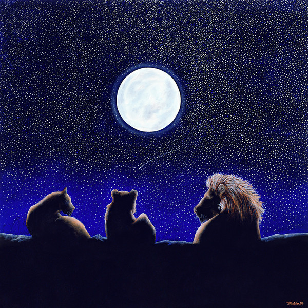 Lion Nights